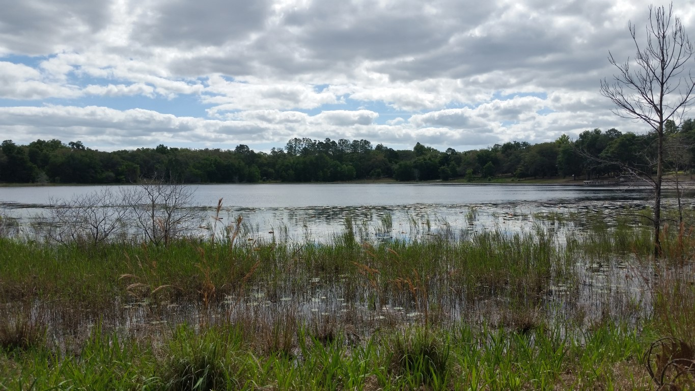 Lake Front 67.5 Acres