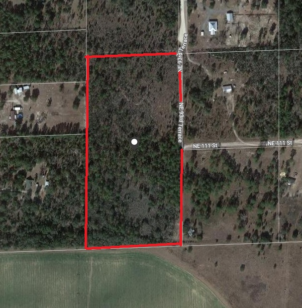 20 Acres Levy County, Florida